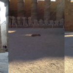 The Sleeping Dogs of Karnak